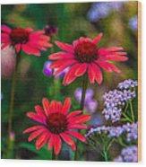 Echinacea And Yarrow Wood Print by Omaste Witkowski