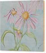 Echinacea Flowers 2012 Wood Print