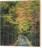 Echo Lake Road Wood Print