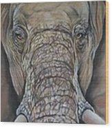 Echo Of The Elephants  Wood Print