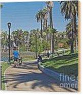 Echo Park Los Angeles Wood Print