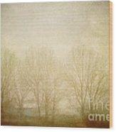 Echoes Wood Print