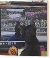Eclipse Watching Herself On Computer Monitor Wood Print