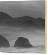 Ecola State Park - Oregon State Coast Wood Print