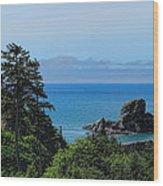Ecola State Park Overlook  Wood Print