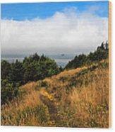 Ecola Trails Wood Print
