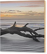 Ecstacy Wood Print by Debra and Dave Vanderlaan