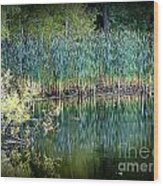 Edge Of Reflections Wood Print
