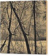 Edge Of Winter Wood Print