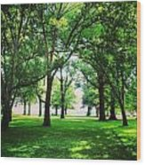 Edgewater Park Forest Wood Print