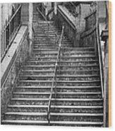 Edinburgh Steps Wood Print