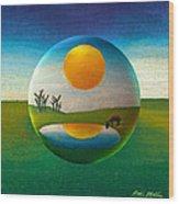 Eeyorb  Wood Print