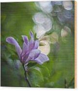 Effervescent Magnolia Wood Print