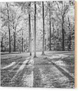 Effusion Wood Print
