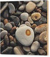 Egg Pebble Wood Print