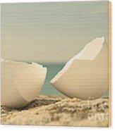 Eggshells. Wood Print