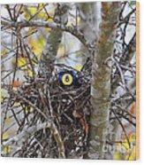 Eggstraordinary Wood Print by Al Powell Photography USA