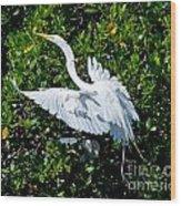 Egret 1 Wood Print