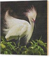 Egret 12 Wood Print