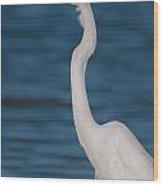 Egret 148 Wood Print