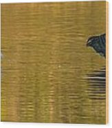 Egret And Canada Goose Wood Print