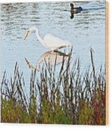 Egret And Coot In Autumn Wood Print