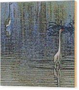 Egret And Heron Watching Wood Print