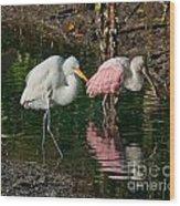 Egret And Pink Spoonbill Wood Print