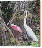 Egret And Spoonbill Wood Print
