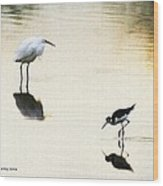 Egret And Stilt At The Grp Wood Print