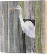 Egret At John's Pass Wood Print