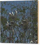 Egret Estuary   #6878 Wood Print