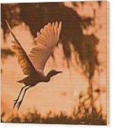 Egret Flying Wood Print