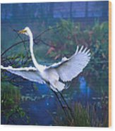 Egret In The Mist Wood Print