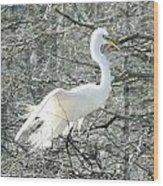 Egret Lake Martin Louisiana Rookery Wood Print