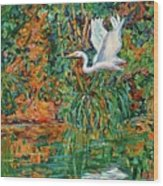 Egret Reflections Wood Print
