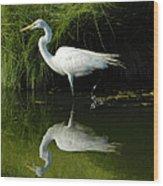 Egret Reflections Wood Print