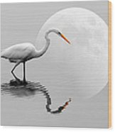Egret With Moon  Wood Print