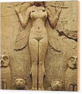 Egypt 1 Wood Print