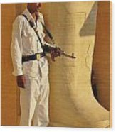 Egypt Tourist Security Wood Print
