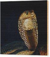 Egyptian Cobra Wood Print