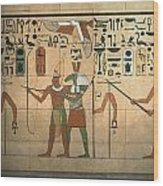 Egyptian Wall Wood Print