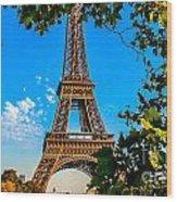 Eiffel In Green Wood Print