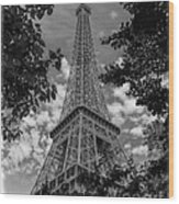 Eiffel Through Trees Bw Wood Print