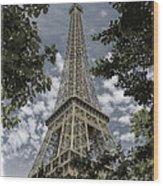Eiffel Through Trees Wood Print