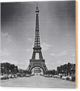 Eiffel Tower And Park 1909 Wood Print