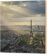 Eiffel Tower From Montparnasse Wood Print