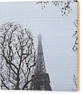 Eiffel Tower - Paris France - 011318 Wood Print by DC Photographer