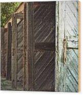 Eight Doors Wood Print