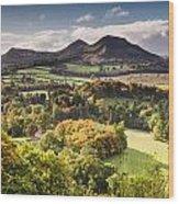 Eildon Hills   Wood Print